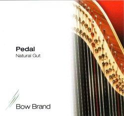 BowBrand PN-O1