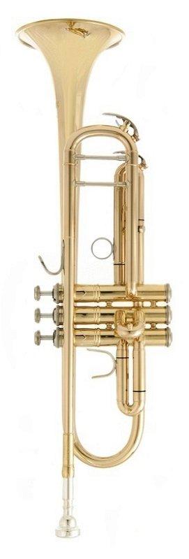 JP251SW Труба Bb, лакированная