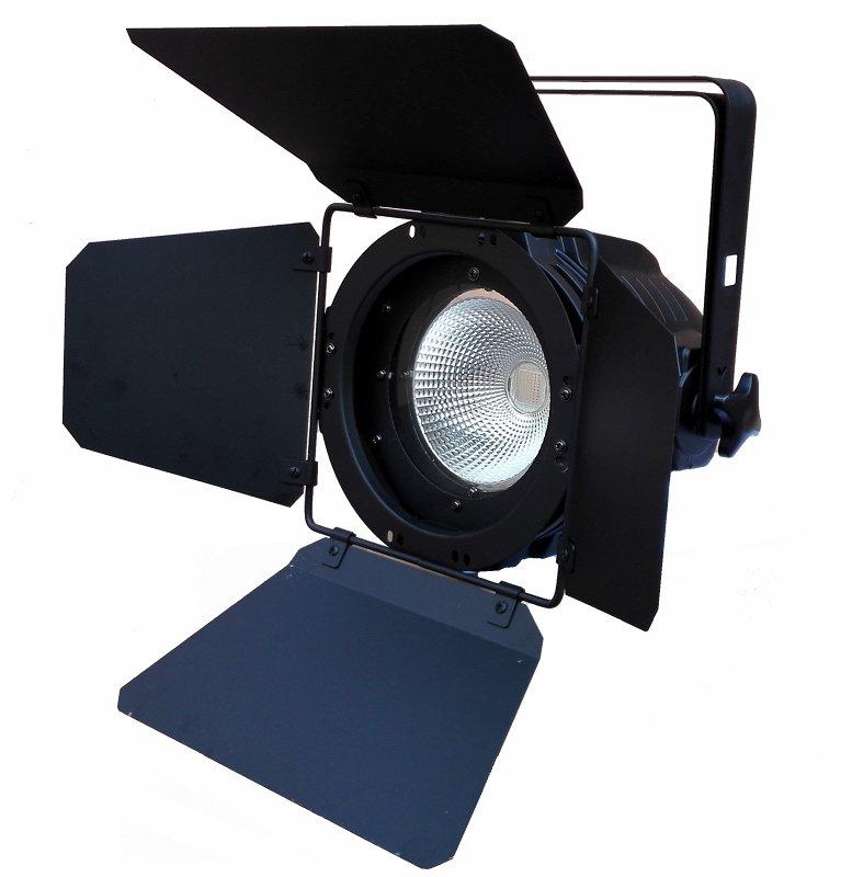 Light PAR COB 90 CW