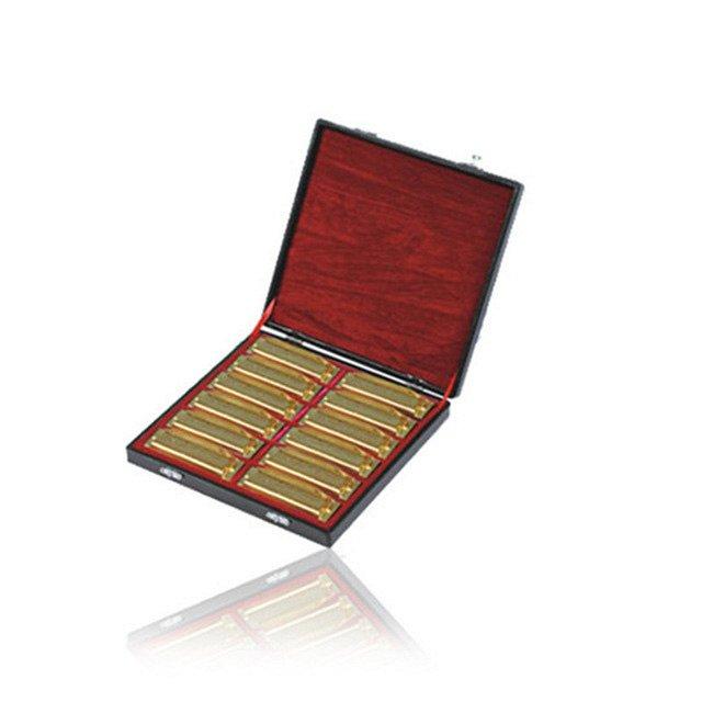 SW1020-12TJ Набор из 12 диатонических губных гармошек