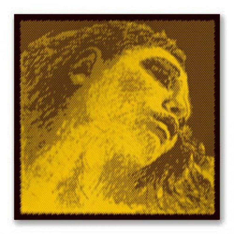 415091 Evah Gold Violin