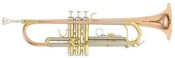 TR-202G Bb труба (цвет золото)
