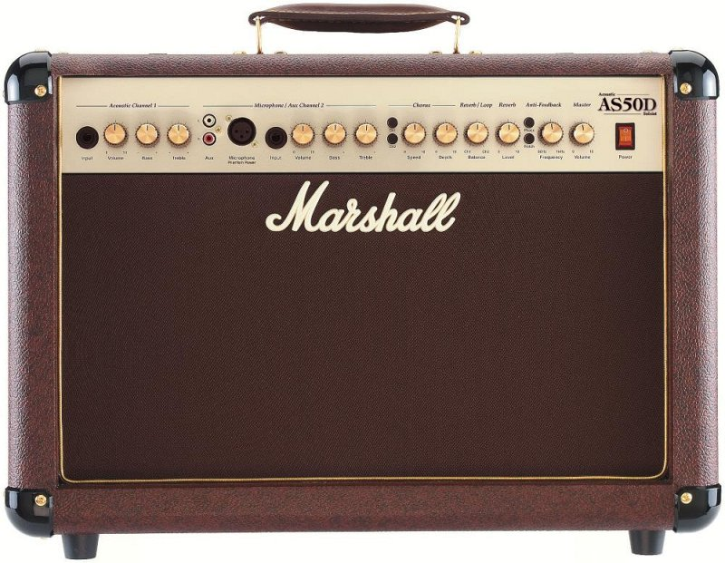AS50D 50W 2x8` Acoustic Soloist Combo With Horn