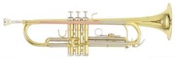 TR-202 Bb труба (цвет золото)