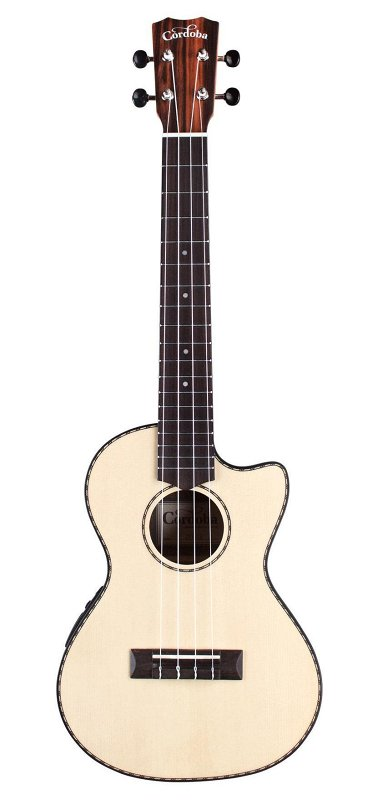 21T-CE Tenor cutaway, Acoustic-electric