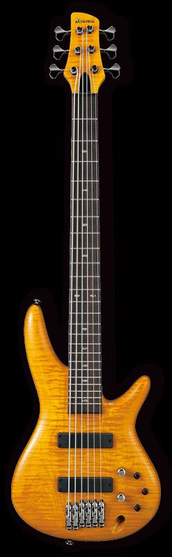 GVB1006-AM, 6-ти струнная бас-гитара с кейсом
